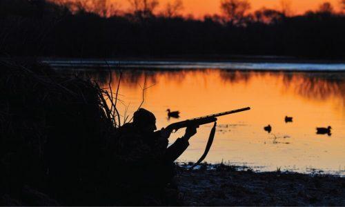 Το κουπόνι Τετάρτης θέλει… κυνήγι στα σημεία! Ποια σημαδεύονται;